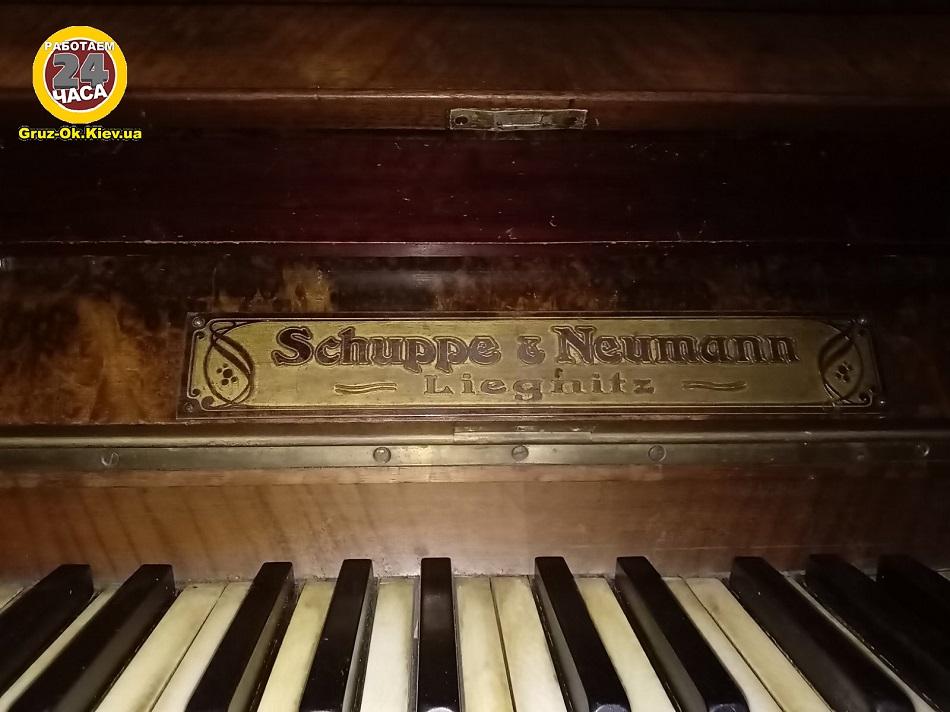 Перевозка пианино Schuppe & Neumann, особенности и история фортепиано